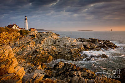 Light On Portland Head Art Print by Susan Cole Kelly