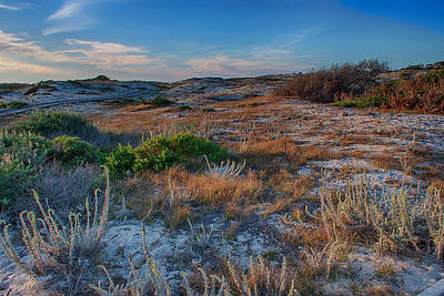 Pacific Grove Photograph - Light On The Dunes by Bill Roberts