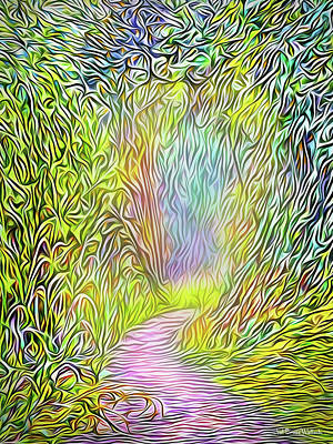 Digital Art - Light On The Path by Joel Bruce Wallach