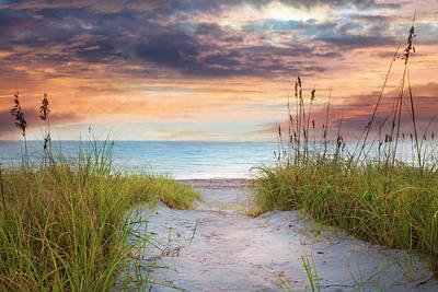 Photograph - Light On The Sand Dunes by Debra and Dave Vanderlaan