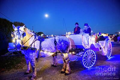 Photograph - Light Parade Grand Marshal 2015 by David Arment