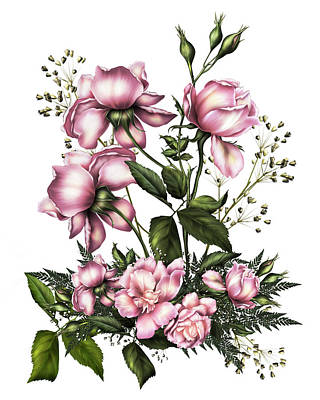 Digital Art - Light Pink Roses On White by Georgiana Romanovna