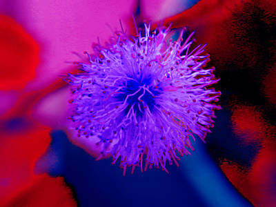 Light Purple Puff Explosion Art Print
