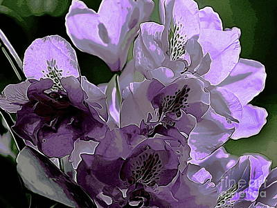 Photograph - Light Purple Rhodie by Erica Hanel