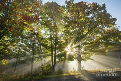 Photograph - Light Rays Shinning by Alana Ranney