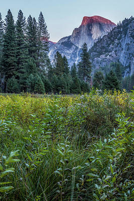 Photograph - Light Setting On Half Dome V by Belinda Greb