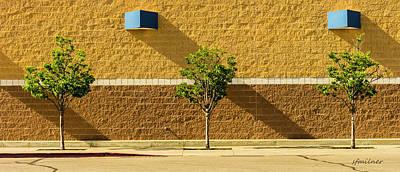 Photograph - Light Shade by Steven Milner