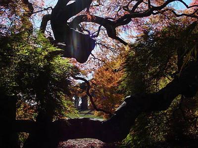 Photograph - Light Shining Through by Renee Holder