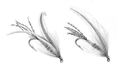 Drawing - Light Spruce Flies - The Rise by Marsha Karle