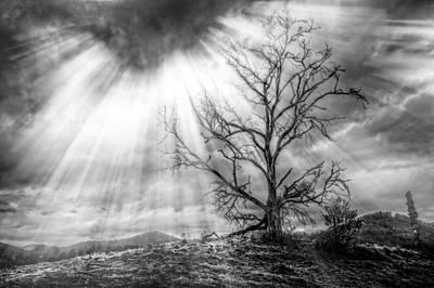Photograph - Light Storm by Debra and Dave Vanderlaan