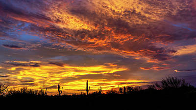 Photograph - Light Up The Desert Skies  by Saija Lehtonen