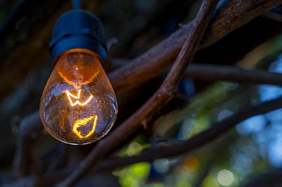 Photograph - Lightbulb by Derek Dean