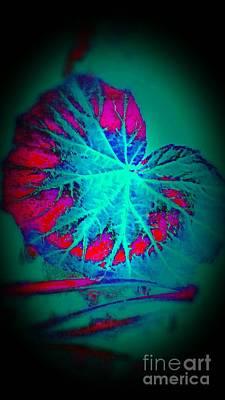 Digital Art - Lighted Leaf by Rachel Hannah