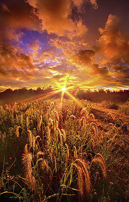 Photograph - Lighten Our Darkness by Phil Koch