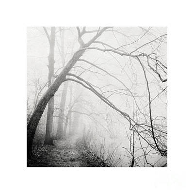 Photograph - Lighter Than Black - Misty River Walk by Paul Davenport