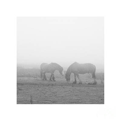 Photograph - Lighter Than Black - Still Dampened And Shrouded In Mist  by Paul Davenport