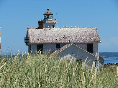 Photograph - Lighthouse At Point Hudson by Marie Jamieson