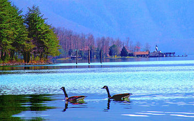 Photograph - Lighthouse Geese, Smith Mountain Lake by The American Shutterbug Society