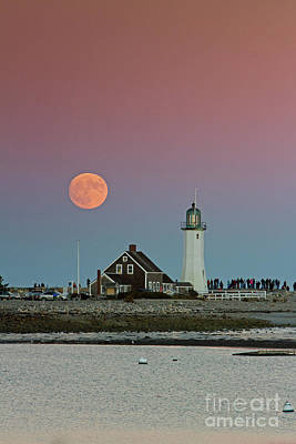 Photograph - Moon Watch by Butch Lombardi