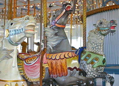 Lighthouse Park Carousel Art Print by Cindy Lee Longhini