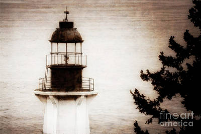 Photograph - Lighthouse Park by Scott Kemper