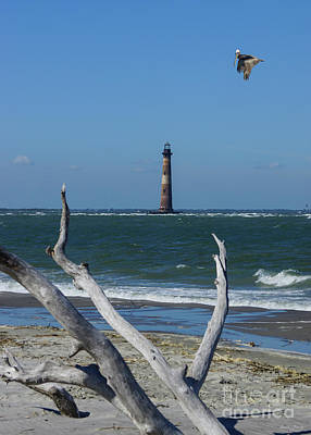 Photograph - Lighthouse Sightseeing by Jennifer White