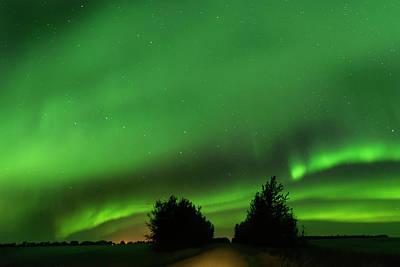 Photograph - Lighting The Way Home by Dan Jurak