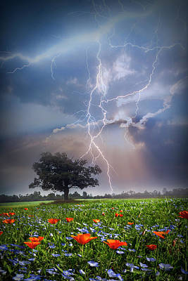 Photograph - Lightning At Sunset After The Rain by Debra and Dave Vanderlaan