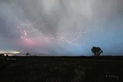 Photograph - Lightning On The Great Plains by Andrea Kelley