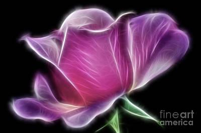 Photograph - Lightning Rose by Kaye Menner