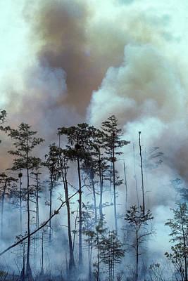 Photograph - Lightning Strike Fire by Robert Potts