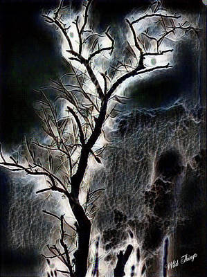 Photograph - Lightning Tree by Wild Thing