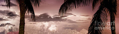 Aruba Photograph - Lightning Under The Palms by Jon Neidert