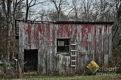 Photograph - Lil Red 2 by Randy Rogers