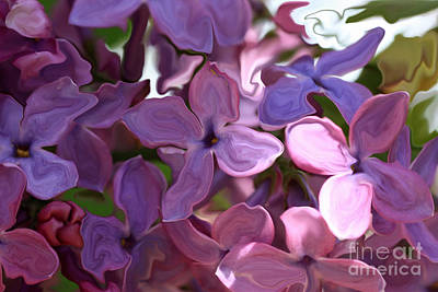 Photograph - Lilac Abstract by Rick Rauzi