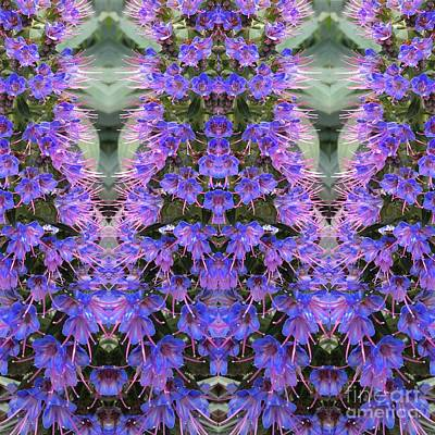 Photograph - Lilac Design  by Nora Boghossian