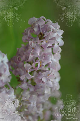 Photograph - Lilac Dreams With Corner Decorations by Debbie Portwood