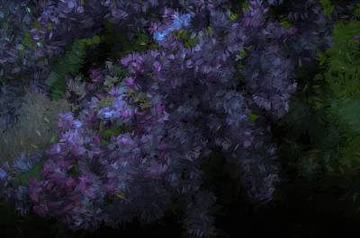 Photograph - Lilac Evening Chalk by Aliceann Carlton