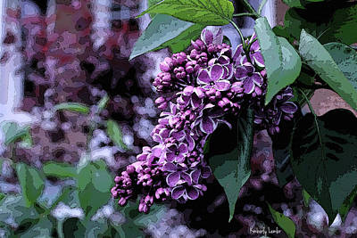 Photograph - Lilac Heaven by Kimberly  Brown