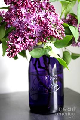 Photograph - Lilac In Mauve Jar by Mary-Lee Sanders