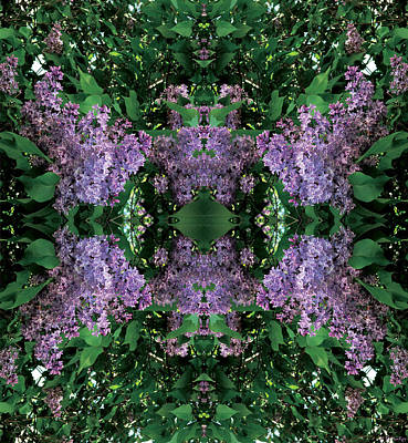 Mandala Digital Art - Lilac Mandala by Celtic Artist Angela Dawn MacKay