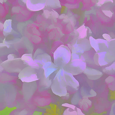 Photograph - Lilac Soft by Diane Alexander