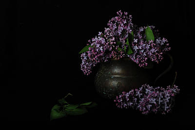 Photograph - Lilacs And Patina by Randi Grace Nilsberg