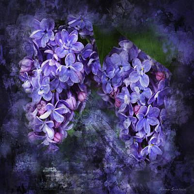 Photograph - Lilacs Frenchy Scruff by Anna Louise