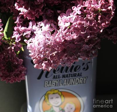 Photograph - Lilacs In Bloom by Mary-Lee Sanders
