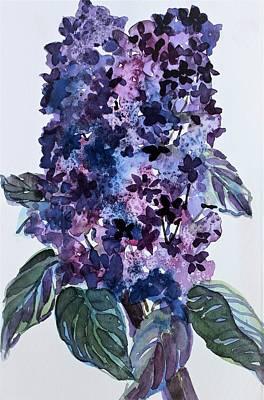 Lilacs Original