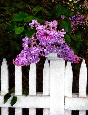 Lilacs - Mother's Day 1 Art Print by Janine Riley