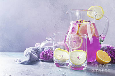 Photograph - Lilca Lemonade by Anastasy Yarmolovich