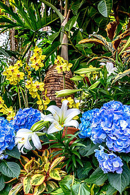 Photograph - Lilies And Orchids by John Haldane