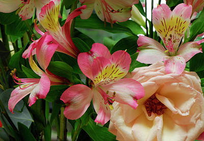 Photograph - Lilies Grow Among The Thorns by Marie Hicks